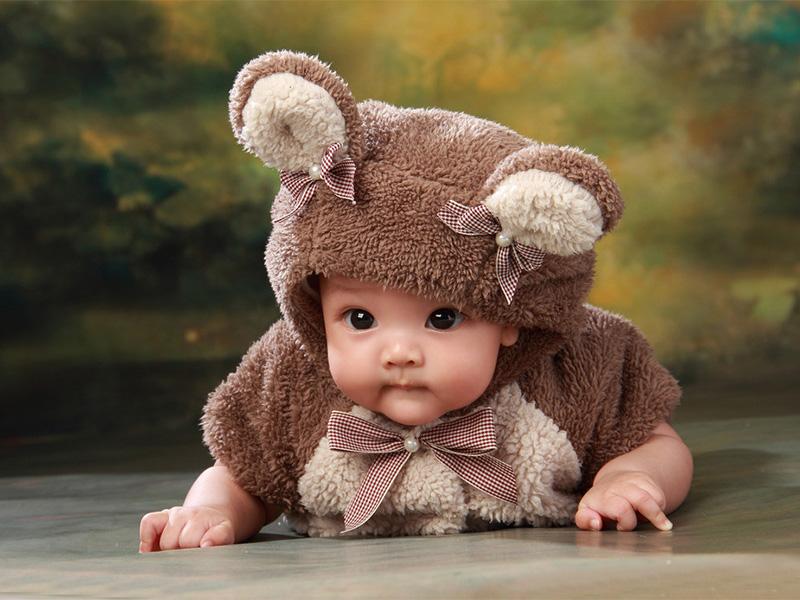 致我的熊宝宝