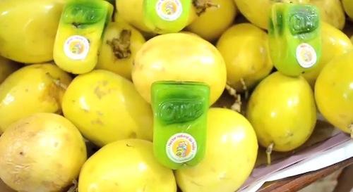 绿色生活新创意:天然果汁盒,让水果自己长出包装盒