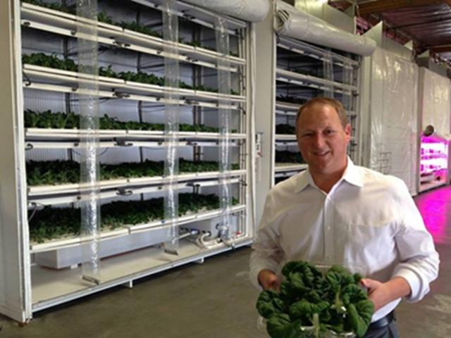 如何经营食品公司的新思路——Famgro农场案例分享