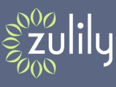 """聚焦妈妈闪购、""""反用户体验""""的Zulily"""