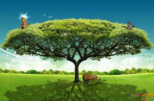 想成为大树,就不要和草去比