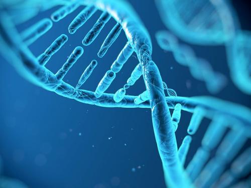 基因疗法新锐获1.5亿美元C轮融资,推进多款从GSK获得的后期项目!
