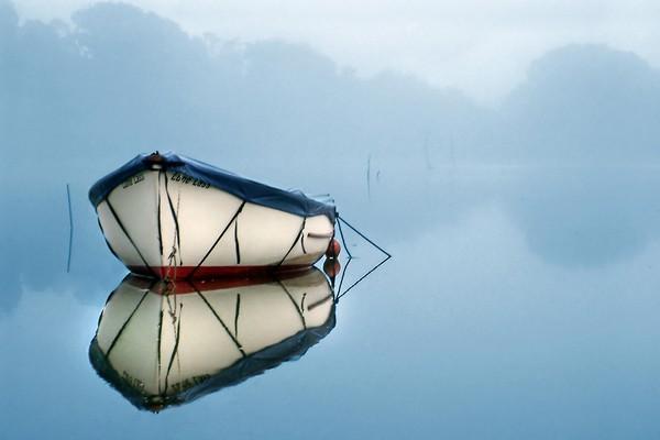 以心为桨,摆渡生活的美丽
